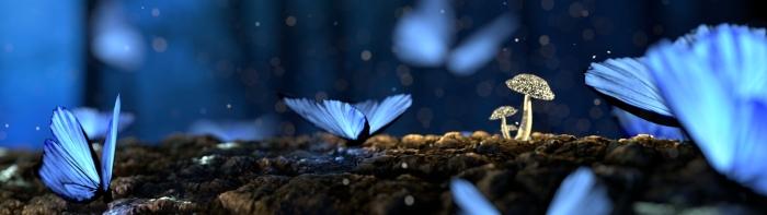 Pexels_GlowingButterflies